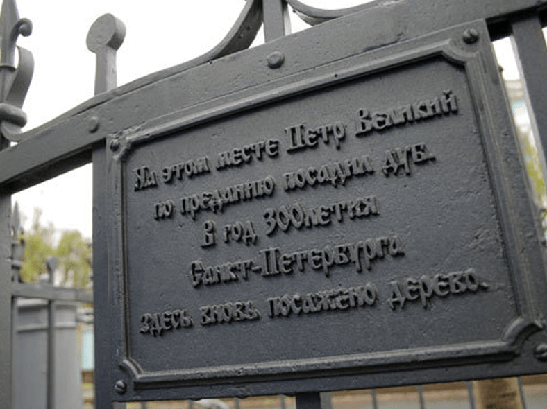 Табличка на ограде вновь посаженного «петровского дуба»: http://www.fiesta.city/